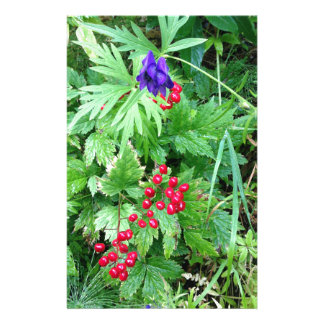 Plants at Pioneer Falls Butte Alaska Stationery
