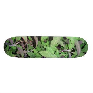 Plants Dark Red and Green Skate Decks