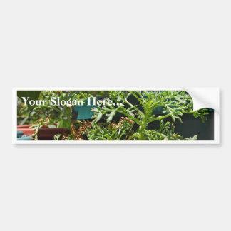 Plants Green Bumper Sticker