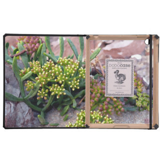 plants in the rocks iPad cover