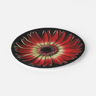 Plants on Plates — Red Daisy