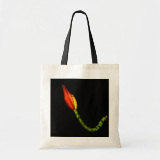 Plants on Totes — Red Banana Flower