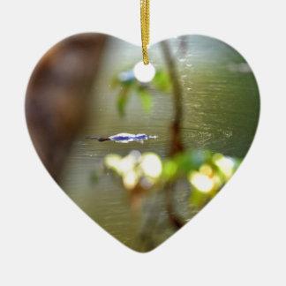 PLARYPUS IN WATER EUNGELLA AUSTRALIA CERAMIC HEART DECORATION