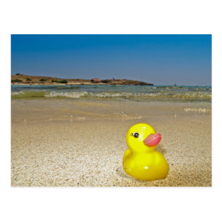 Plastic Duck at the Beach Postcard