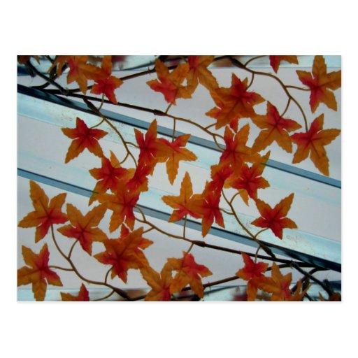 Plastic Leaves & Symmetry Postcards