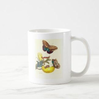 Plate #23- Musa paradisiaca, Caligo teucer and ... Coffee Mug