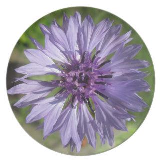 Plate - Lilac Purple Bachelor s Button
