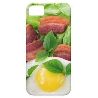 Plate with egg yolk, fried bacon and herbs iPhone 5 cover