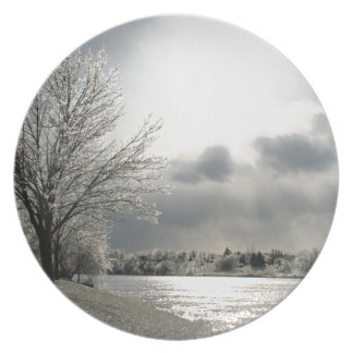 plate with photo of icy winter landscape
