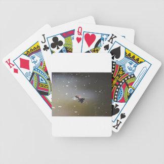 PLATPUS EUNGELLA NATIONAL PARK AUSTRALIA BICYCLE PLAYING CARDS
