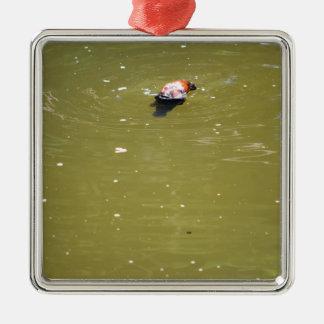 PLATYPUS DIVING IN WATER EUNGELLA AUSTRALIA Silver-Colored SQUARE DECORATION