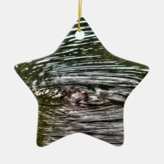PLATYPUS EUNGELLA AUSTRALIA ART EFFECTS CERAMIC STAR DECORATION
