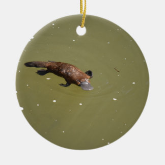 PLATYPUS EUNGELLA NATIONAL PARK AUSTRALIA CERAMIC ORNAMENT