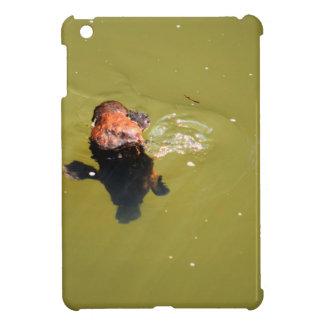 PLATYPUS EUNGELLA NATIONAL PARK AUSTRALIA iPad MINI CASES