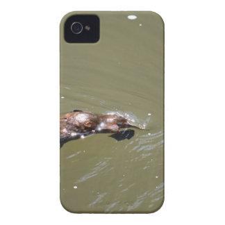PLATYPUS EUNGELLA NATIONAL PARK AUSTRALIA iPhone 4 Case-Mate CASE