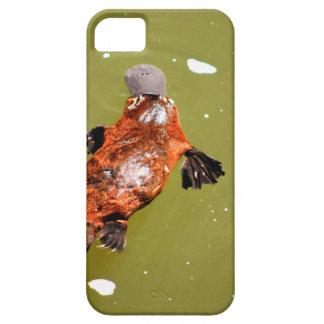 PLATYPUS EUNGELLA NATIONAL PARK AUSTRALIA iPhone 5 CASE