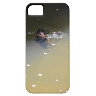 PLATYPUS EUNGELLA NATIONAL PARK AUSTRALIA iPhone 5 COVER