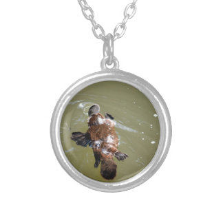 PLATYPUS EUNGELLA NATIONAL PARK AUSTRALIA SILVER PLATED NECKLACE