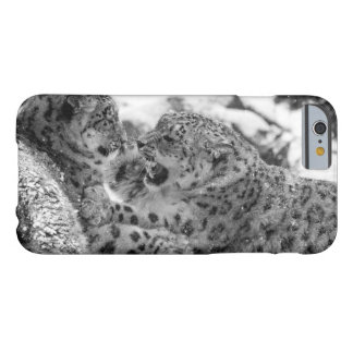 Play-Fighting Snow Leopard Brothers Barely There iPhone 6 Case