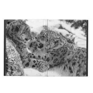 Play-Fighting Snow Leopard Brothers iPad Air Cover