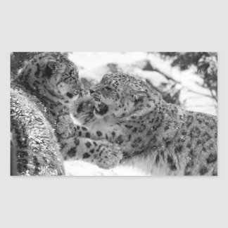 Play-Fighting Snow Leopard Brothers Rectangular Sticker