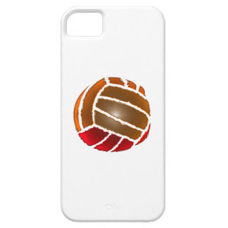Play it Again Sports Case For The iPhone 5