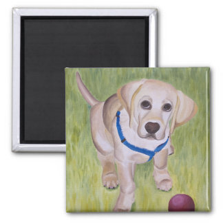 Play With Me. Yellow Labrador Retriever Magnent Magnet