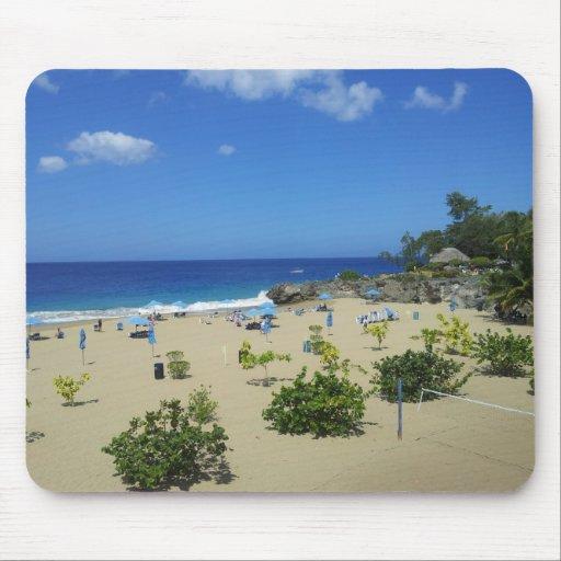 PLAYA ALCIA BEACH SOSUA DOMINICAN REPUBLIC SURF OC MOUSEPAD