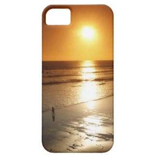 Playa landscape iPhone 5 covers
