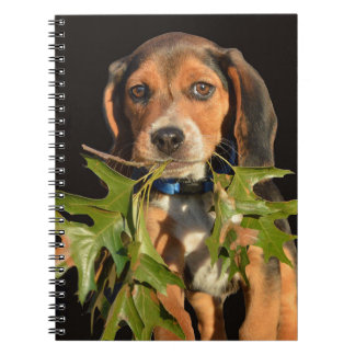 Playful Beagle Puppy With Leaves Notebook