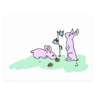 Playful Bunnies Postcard