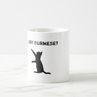 Playful Burmese Cat with 'Got Burmese?' Text Coffee Mug