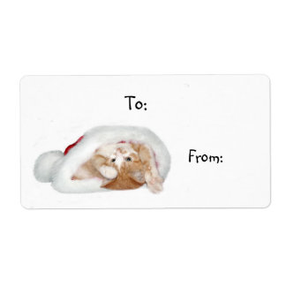 Playful Christmas kitten Shipping Label