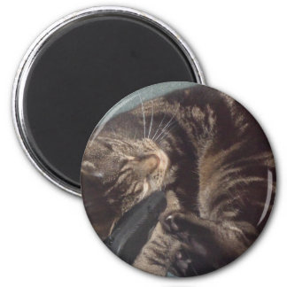 Playful Dave 6 Cm Round Magnet