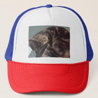 Playful Dave Trucker Hat