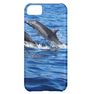Playful Dolphins iPhone 5C Covers