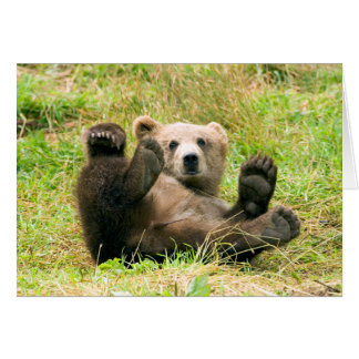 Playful Grizzly Bear Card
