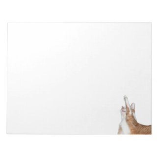 Playful orange and white tabby notepad
