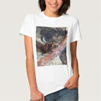 Playful Otter T Shirt