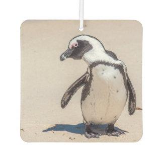 Playful Penguin Air Freshener