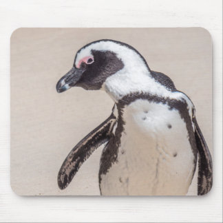 Playful Penguin Mouse Pad