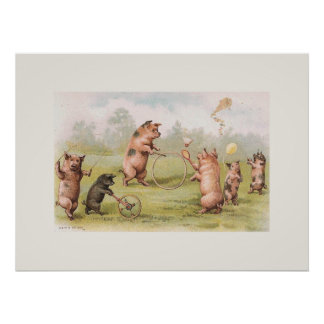 Playful Pigs Posters