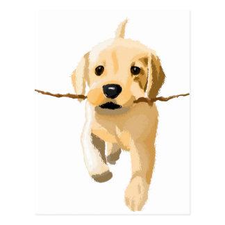 Playful puppy postcard