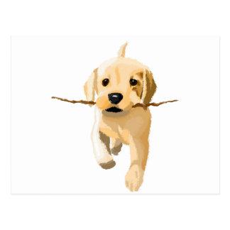 Playful puppy postcards