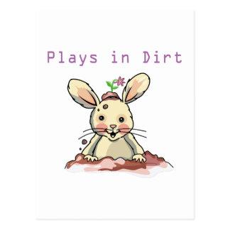 Playful Rabbit Postcards
