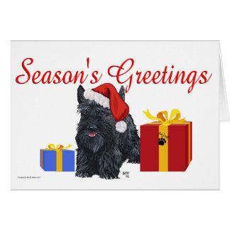 Playful Scottish Terrier Greetings Card