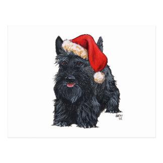 Playful Scottish Terrier Santa Post Cards