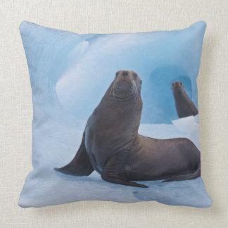 Playful stellar sea lions wrestle on iceberg throw pillow