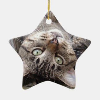 Playful Striped Feral Tabby Cat Ceramic Ornament
