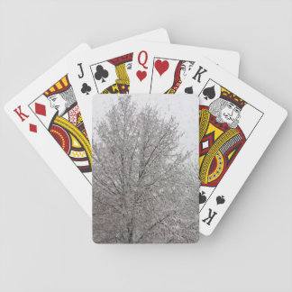 Playing cards covered with snow tree.